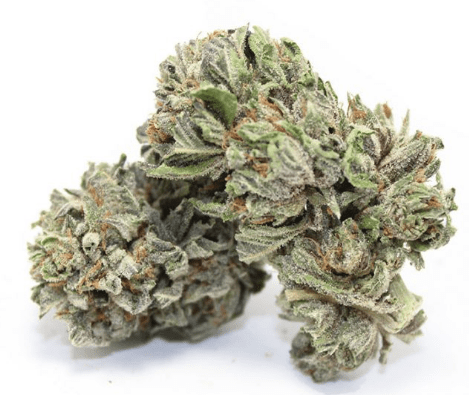 purple buddah - Weed Delivery Toronto